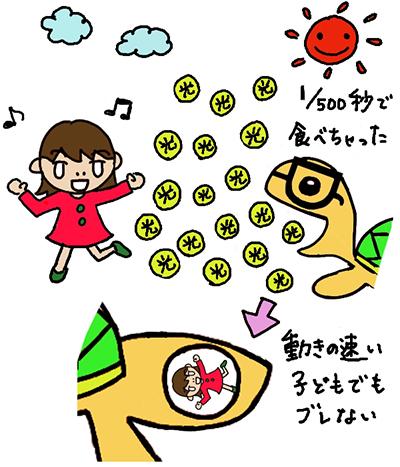 デジ亀くんkosoku